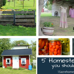 5 Homesteading Skills You Should Know