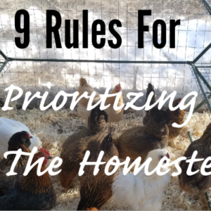 9 Rules For Prioritizing On The Homestead