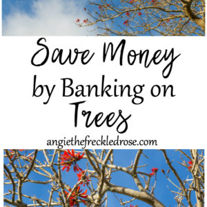 Save Money by Banking on Trees
