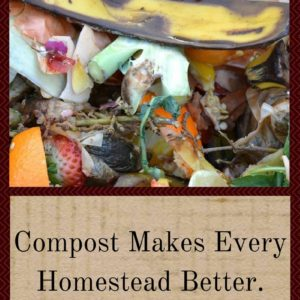 Compost Makes Every Homestead Better: Want To Try?