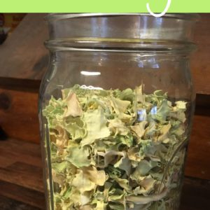 How to Dehydrate Fresh Cabbage