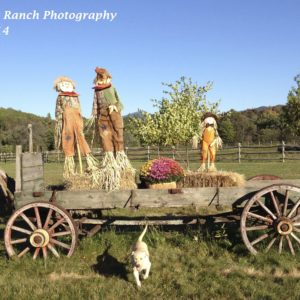 History Of The Scarecrow – Rural Legends And Folklore