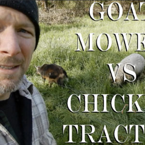 Goat Mower v Chicken Tractor