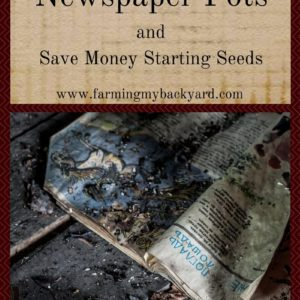 How To Make Newspaper Seed Pots and Save Money Starting Seeds