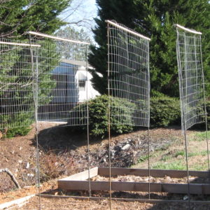 How to setup pea fencing
