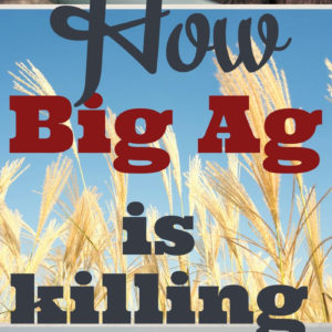 How Conventional Farming Is Killing Us