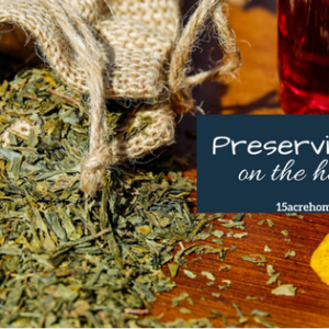 How to Preserve Herbs