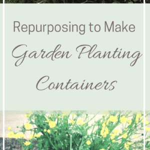 Reuse Household Items to Make Planting Containers