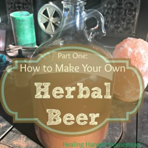 How to Make Herbal Beer (Ale) Part One