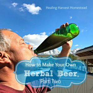 How to Make Your Own Herbal Beer…Part TWO