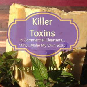 Killer Toxins Lurking in Your Commercial Soap!?