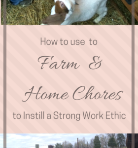 How to Use Chores to Instill a Strong Work Ethic in Kids