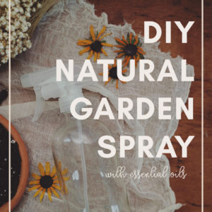 Natural Garden Spray for Pests