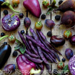 Purple Vegetables and Fruit to Grow in Your Garden