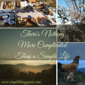 Nothing's More Complicated Than A Simple Life