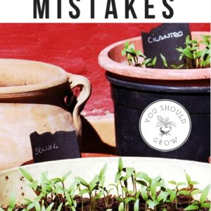 The 10 Worst Gardening Mistakes You Can Make