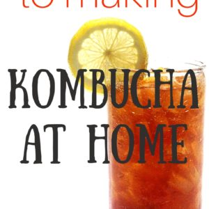 The Lazy Person's Guide to Making Kombucha at Home