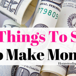 10 Things To Sell To Make Extra Money! -Supplement Homestead Income