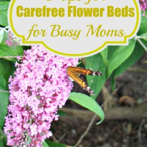 8 Tips for Carefree Flower Beds