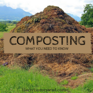 Composting: What You Should Know