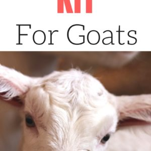 First Aid Kit for Goats
