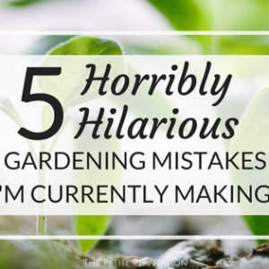 5 Horribly Hilarious Gardening Mistakes I'm Currently Making!