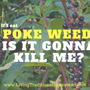 Poke Weed: Is it Gonna Kill Me?