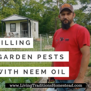 Killing Garden Pests with Neem Oil