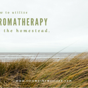 Using Aromatherapy on the Homestead
