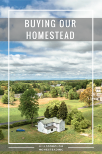 Buying Our Homestead