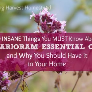 INSANE Things You MUST Know About Marjoram Essential Oil…And Why You Need it in Your Home!