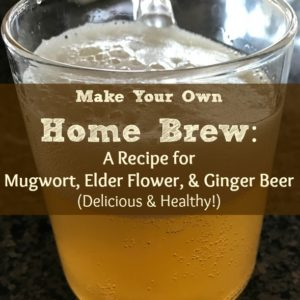 How to Make Herbal Ale: Mugwort, Elder Flower, and Ginger Ale—Delicious and Healthy!