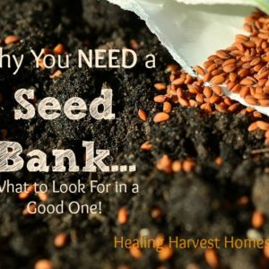 Why You Must Keep a Seed Bank..And What to Look for in a Good One!