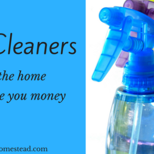 DIY Cleaners for the Home