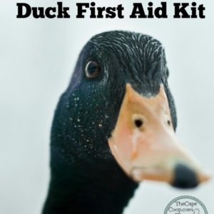 Duck First Aid Kit