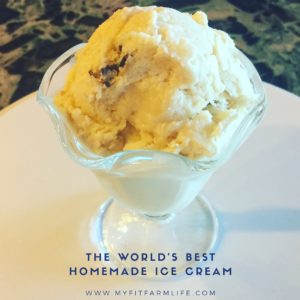 The World's Best Homemade Icrecream