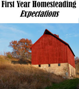 Realistic First Year Homesteading Expectations