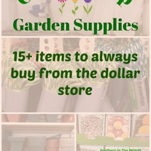 Gardening supplies from the dollar store