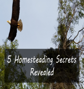 5 Homesteading Secrets Revealed