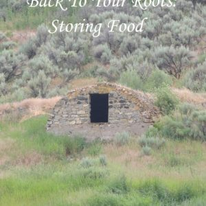 How To Build A Root Cellar For Your Homestead: A Guide