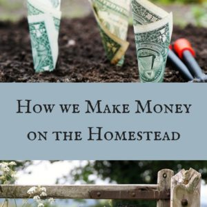 How we Make Money on the Homestead