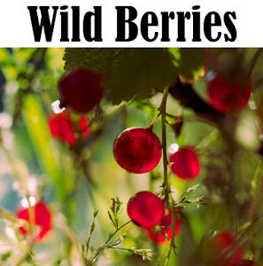 Learn to Forage for Wild Berries