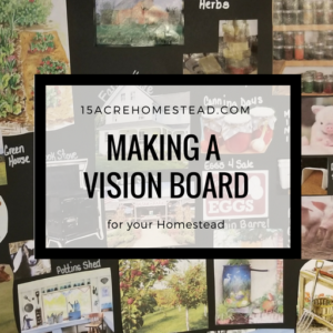 How to Make a Vision Board for your Homestead