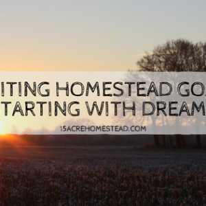 Writing Homestead Goals