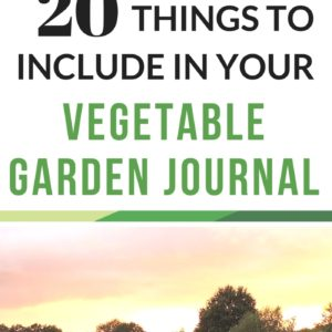 20 Things To Include In Your Vegetable Garden Journal