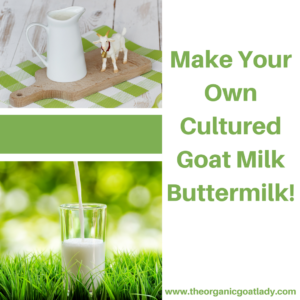 Make Your Own Cultured Goat Milk Buttermilk