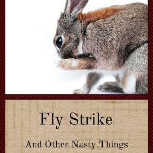 Fly Strike And Other Nasty Things To Avoid