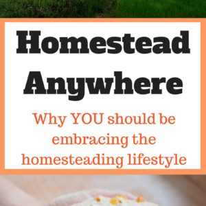 The Uprising – Homesteading is Our Way Forward