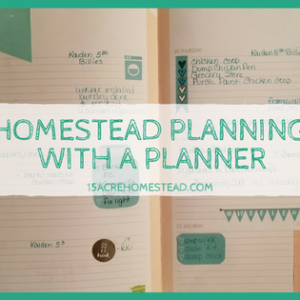 Homestead Planning with a Planner