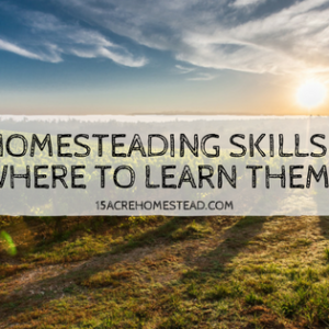Homesteading Skills: Where to Find Them